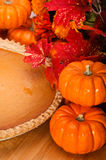 Pumpkin pie with pumpkins. Royalty Free Stock Images