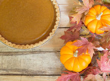 Pumpkin Pie and Pumpkins Stock Image