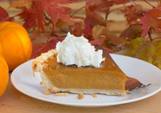 Pumpkin Pie Slice Closeup Stock Image