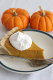 Pumpkin Pie Slice - Vertical Royalty Free Stock Photography