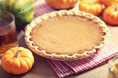 Pumpkin pie with small pumpkins Stock Images