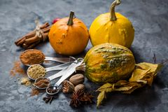 Pumpkin pie spices in measuring cups. Rustic background Stock Photography