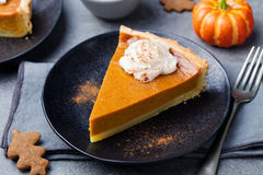 Pumpkin pie, tart with whipped cream on a plate royalty free stock photography