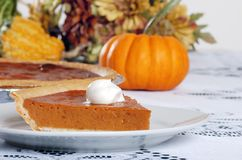 Pumpkin pie and whip cream Royalty Free Stock Photography