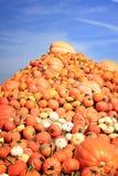 Pumpkin pile stock image