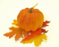 Pumpkin on Pile of Fall Leaves Royalty Free Stock Photos