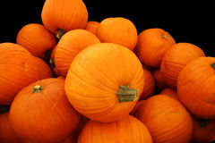 Free Pumpkin Pile Isolated On Black Stock Photo - 291160