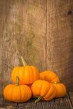 Pumpkin Pile Portrait Royalty Free Stock Photography
