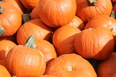 Pumpkin Pit Royalty Free Stock Images