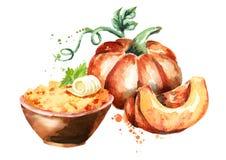 Pumpkin porridge in the bowl. Watercolor illustration Royalty Free Stock Photography