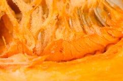 Pumpkin pulp. Closeup of fresh pumpkin pulp Stock Image