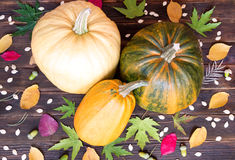 Pumpkin and pumpkin seeds Royalty Free Stock Photo