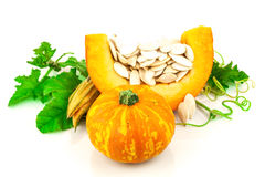Pumpkin with pumpkin seeds. Isolated on white background Royalty Free Stock Images