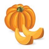 Pumpkin and pumpkin slice Stock Photography