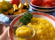 Pumpkin puree. Tasty puree made of pumpkin, tomatoes and pepper Royalty Free Stock Photo