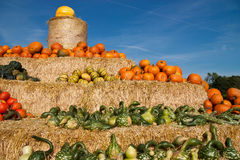 Pumpkin pyramid Royalty Free Stock Photo