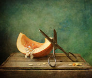 Pumpkin quarter with scissors Stock Photography