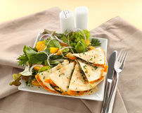 Pumpkin Quesadilla. Delicious pumpkin quesadilla sliced and ready to serve with a garden salad stock photography