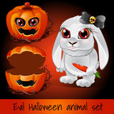 Pumpkin and rabbit on a dark red background Royalty Free Stock Image