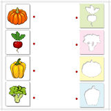 Pumpkin, radishes, peppers and broccoli. Educational game for ki Stock Photo