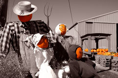Pumpkin rag dolls 'family'. A family of rag dolls with pumpkin head on a farm, in autumn (fall) with pumpkins for sale in the background Royalty Free Stock Photos