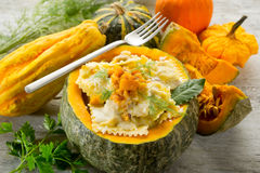 Pumpkin ravioli Royalty Free Stock Images