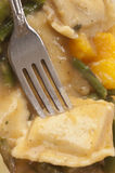 Pumpkin Ravioli Royalty Free Stock Image