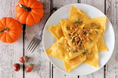 Pumpkin ravioli pasta, scene on rustic white wood Royalty Free Stock Photos