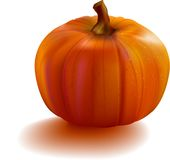 Pumpkin realistic with mesh Royalty Free Stock Photo