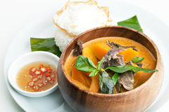 Pumpkin Red Curry with Beef stock image