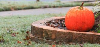 Pumpkin on Right Stock Image
