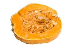 Pumpkin ripe Royalty Free Stock Photography