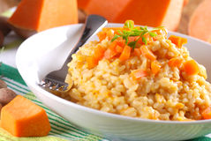 Pumpkin risotto on the plate Stock Images