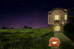 A pumpkin on the road of old vintage medievalhouse beside wheat field with warm light inside at night Royalty Free Stock Image