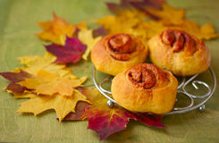 pumpkin rolls cinnamon on a background of autumn leaves Stock Photo