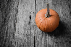 Pumpkin on Rustic Wood Royalty Free Stock Images