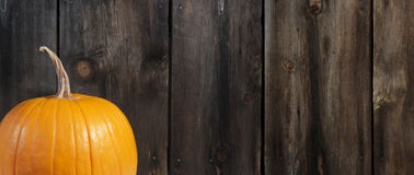 Pumpkin with Rustic Wood Background