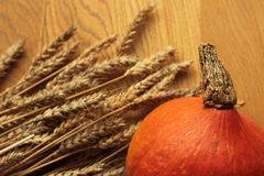 Pumpkin and rye Stock Photography
