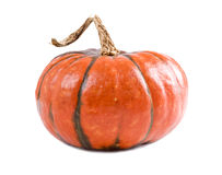 Pumpkin s Stock Images