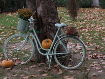 The pumpkin's bicycle Stock Photography