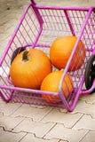 Pumpkin's harvest in market trolley royalty free stock photos