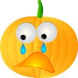 pumpkin sad Στοκ Φωτογραφίες