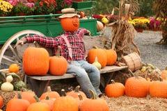 Pumpkin Scarecrow. A pumpkin scarecrow sitting on a bench Royalty Free Stock Photo