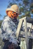 Pumpkin Scarecrow Climbing a Ladder Stock Photos