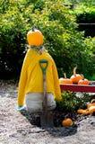 Pumpkin scarecrow Stock Image