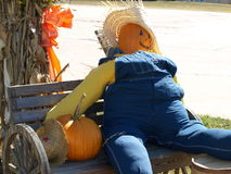 Fall Pumpkin Scarecrow Farmer Outdoor Display. Smiling man stuffed with straw in overalls with pumpkin head and straw hat sitting on wooden bench outdoors in Stock Photography