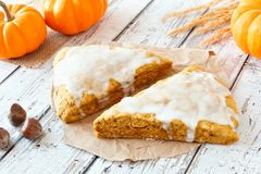 Pumpkin scones with frosting, on rustic white wood Royalty Free Stock Photography