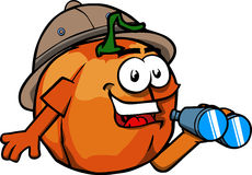 Pumpkin scout or explorer with binoculars Stock Photography