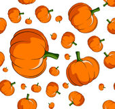 Pumpkin seamless background Stock Photography