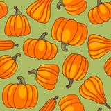 Pumpkin seamless pattern. Royalty Free Stock Images